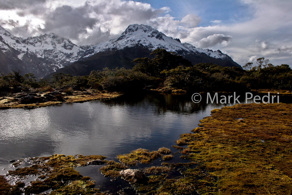 New Zealand South Island Alpine