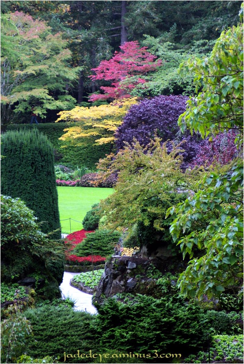 Sunken Garden #2