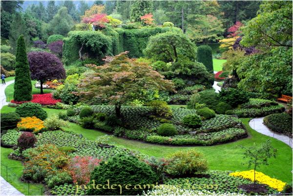 Sunken Garden #3