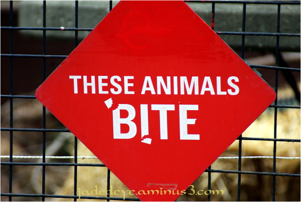 These Animals Bite!!