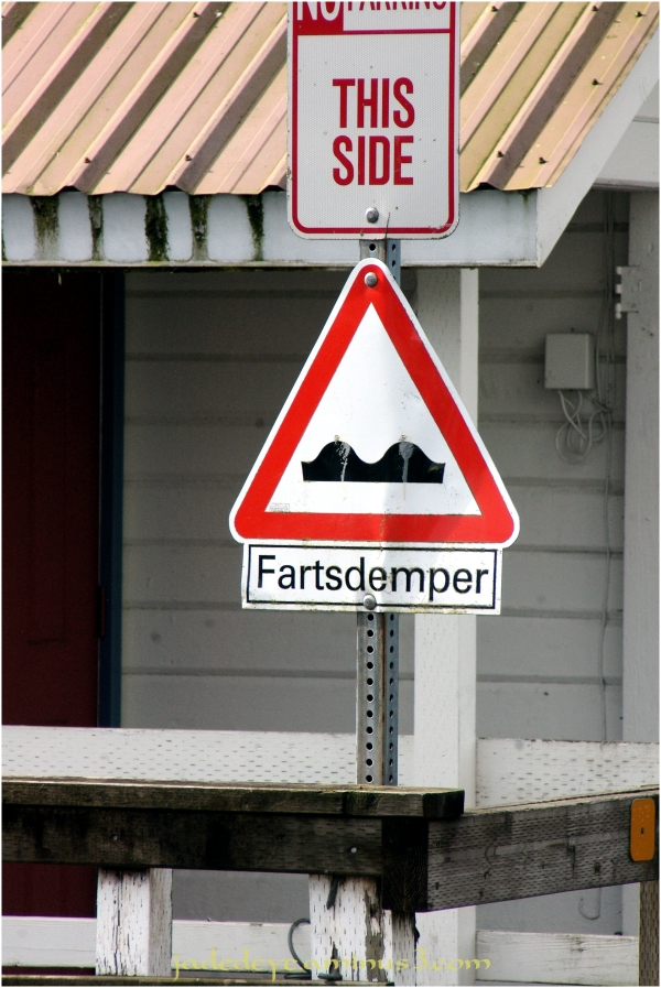 Fartsdemper - The Sign Says It All!
