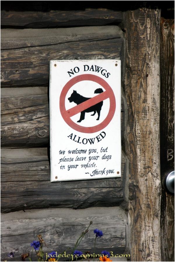 No Dawgs Allowed!