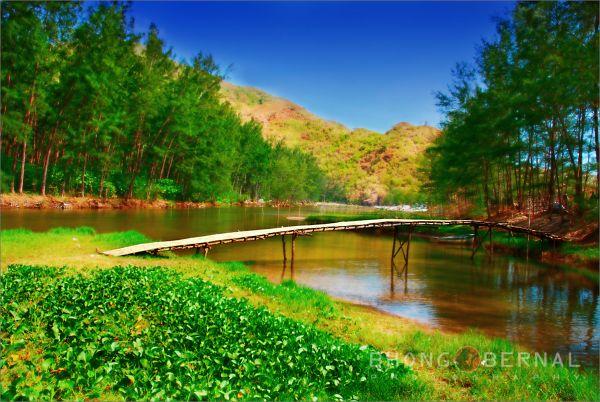 Anawangin Bamboo Bridge