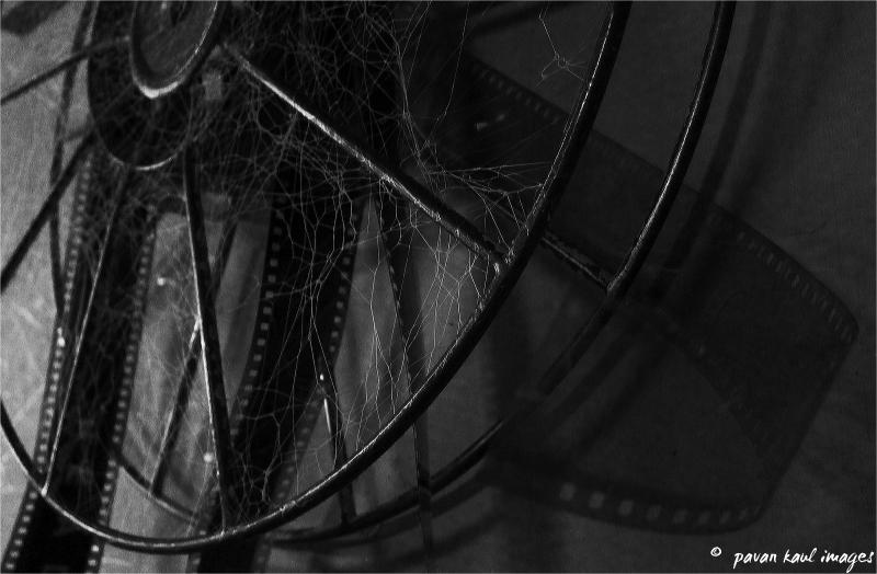 cobwebs and film