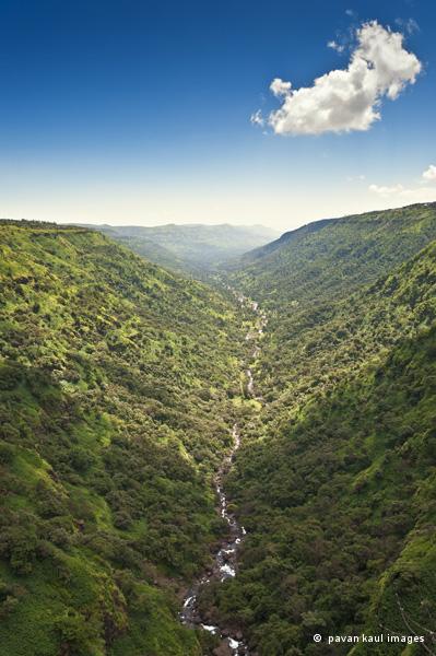 stream running through hills