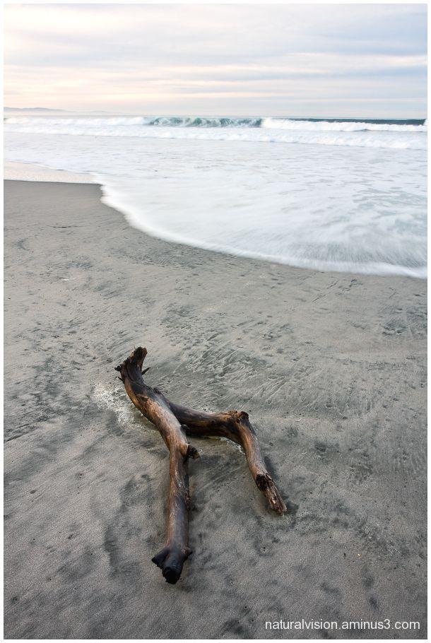 Pajaro Dunes Shoreline