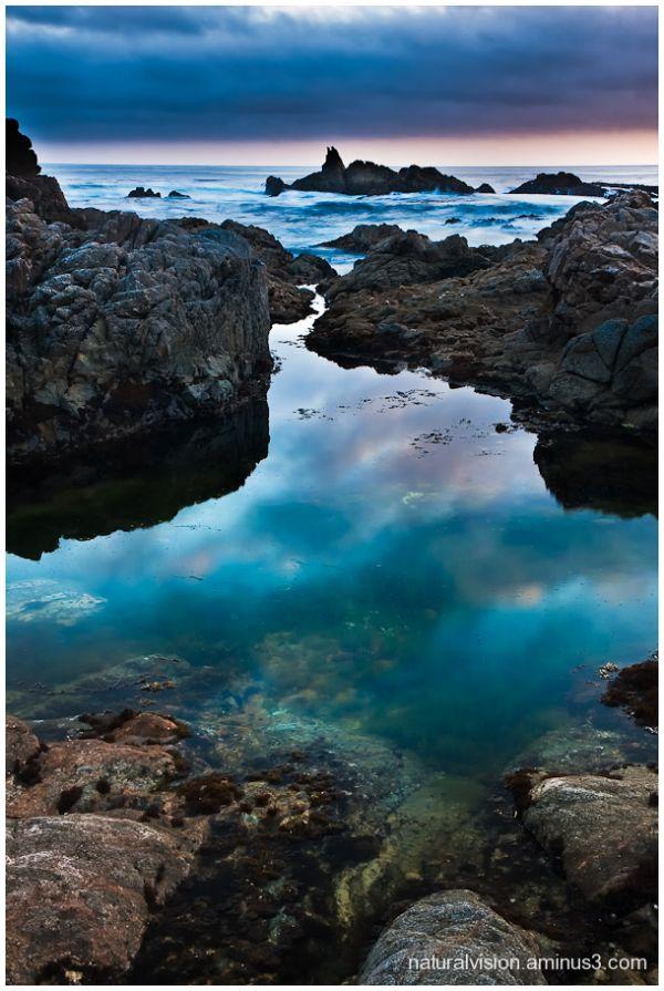 BIg Sur Tidepool