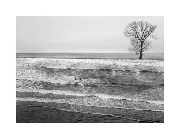 Le Rêve de la mer