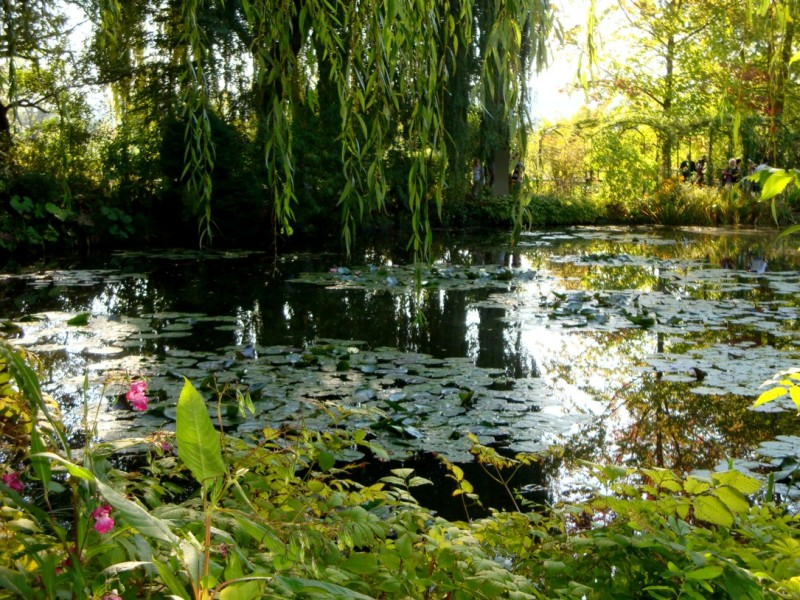 Jardin de Monet &agrave; Giverny