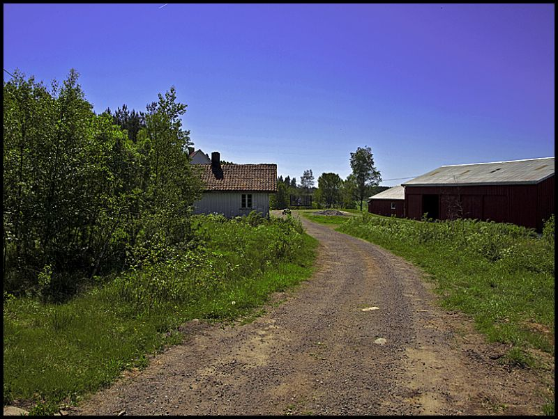 The road to a farm in Hobøl, Norway