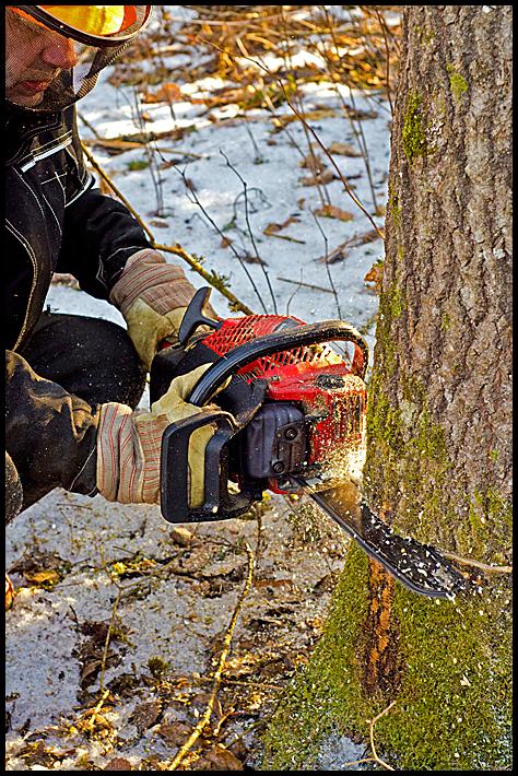 A man using a chainsaw