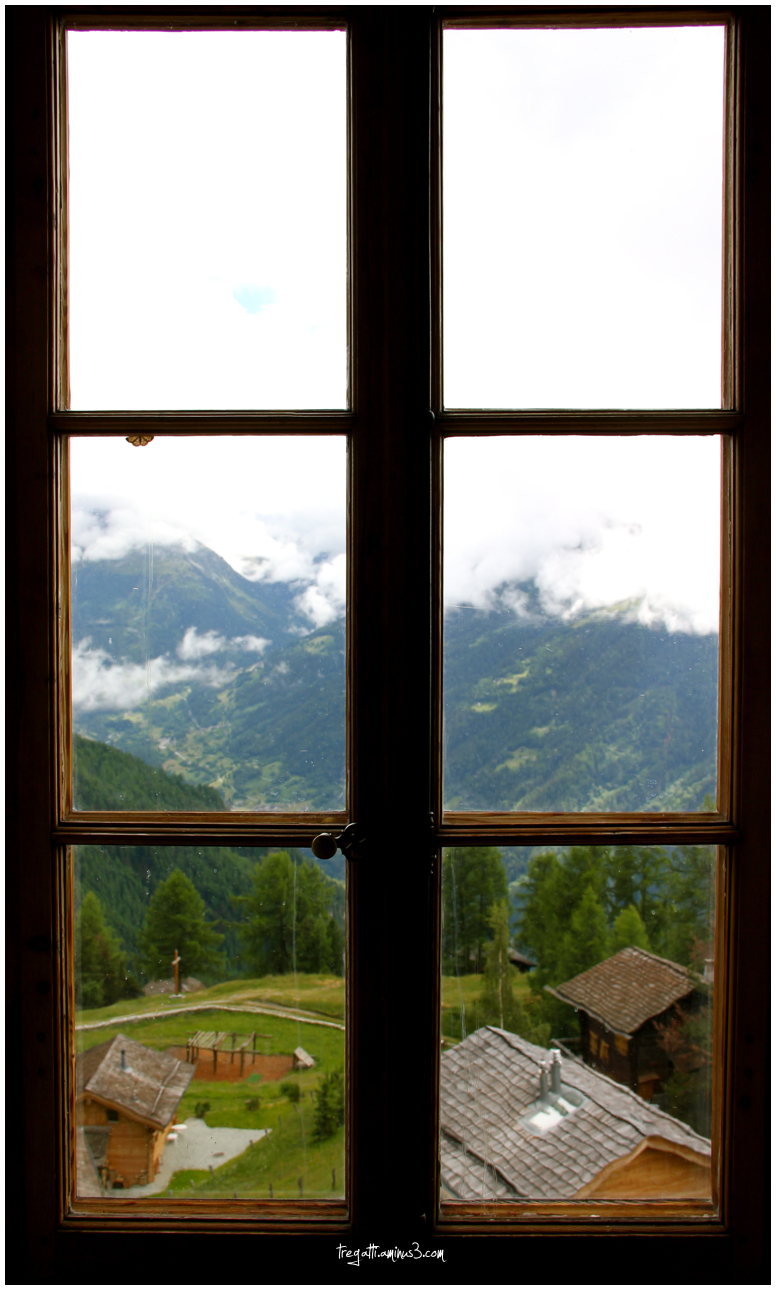 window, mountains, moth