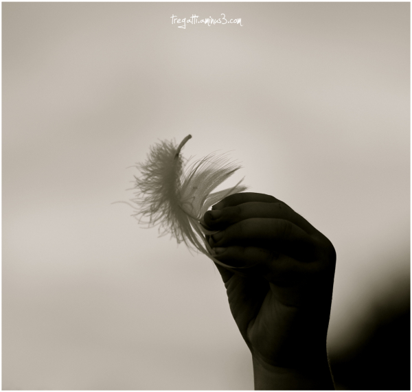 hand, swan feather