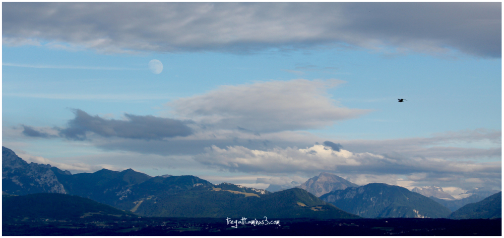 gull, mountains, moon