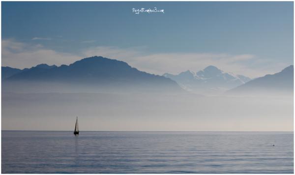sailboat, lake, mt blanc, duck