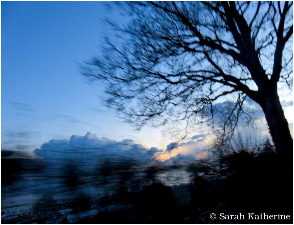 winter, tree, sky, clouds