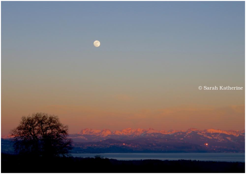 moon, sunset, mountains, lake, tree