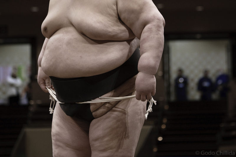 sumo, body, wrestler, Tokyo, Kokugikan, Japan