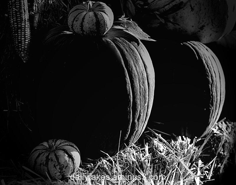 happy halloween.....