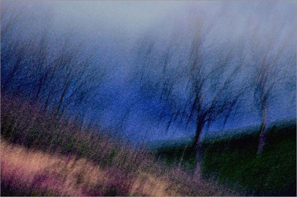 winter hillside ....