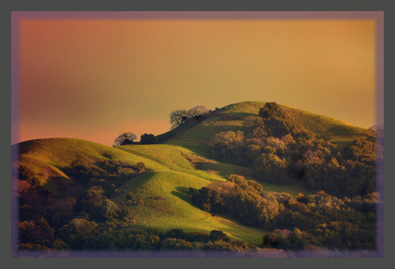 """... those green green hills of home ..."" 5"