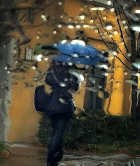 california winter : woman under umbrella