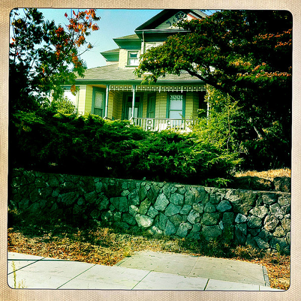 the road to petaluma : a house in town
