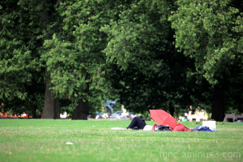 London Park VII