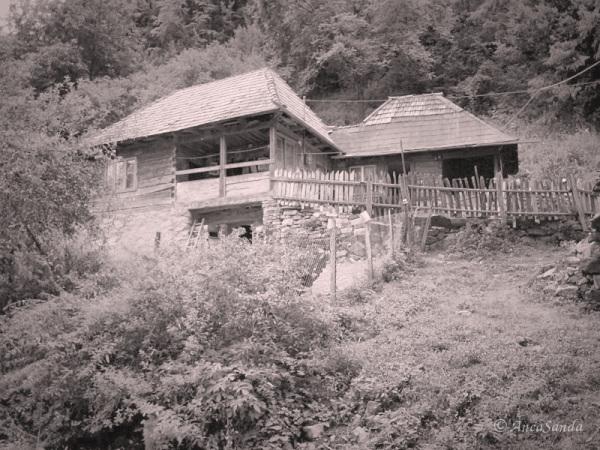 Casa uitată de vremuri....