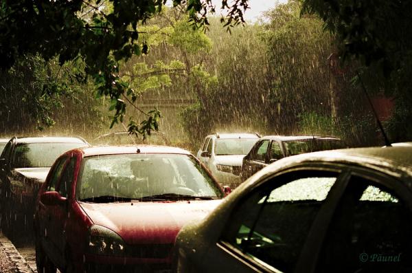 The rain  2