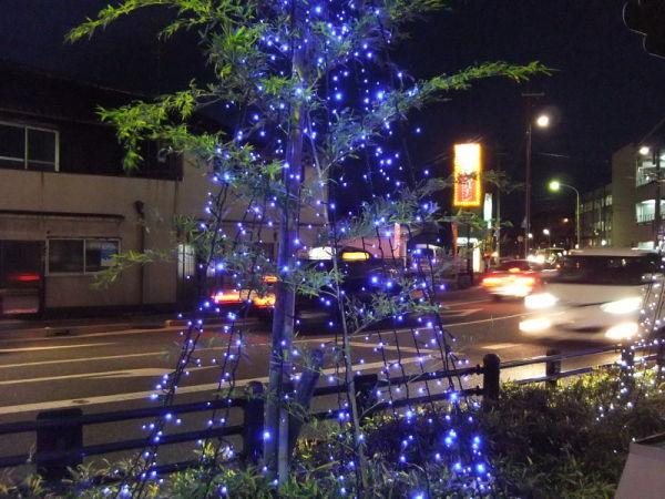 Christmas everywhere...  #2