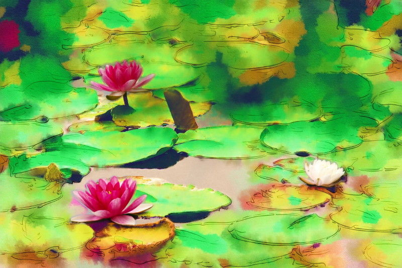 Water lilies #2