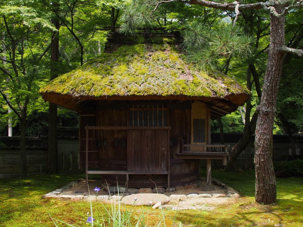 Cylindrical tea house