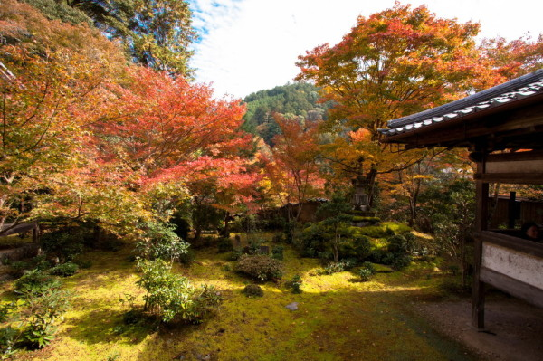 season of warm colors #7