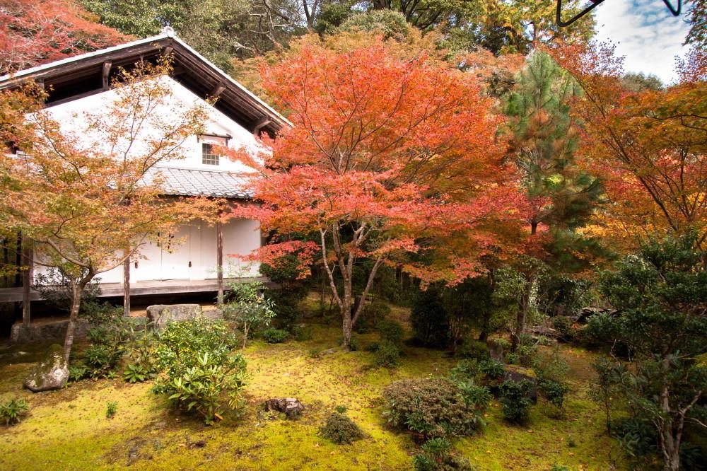 season of warm colors #8