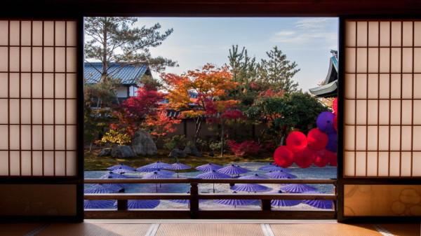 Fabulous colors in November #16