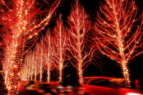 Festive glow #3