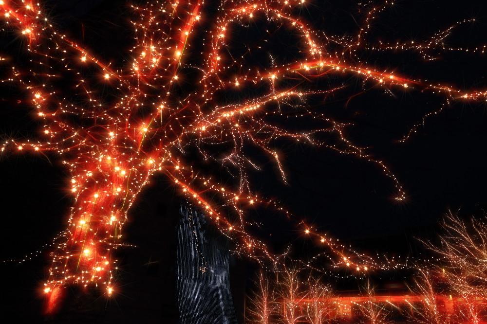Festive glow #4