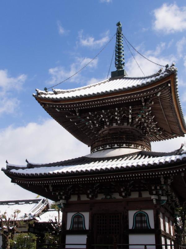 little trip in winter 妙顕寺 #5