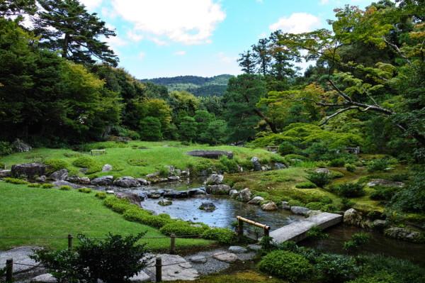 Marshal's beloved garden #1