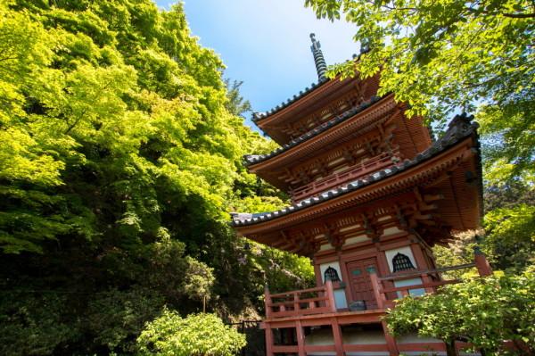 A pagoda in green