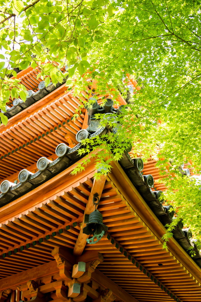 Pagoda's roof and green