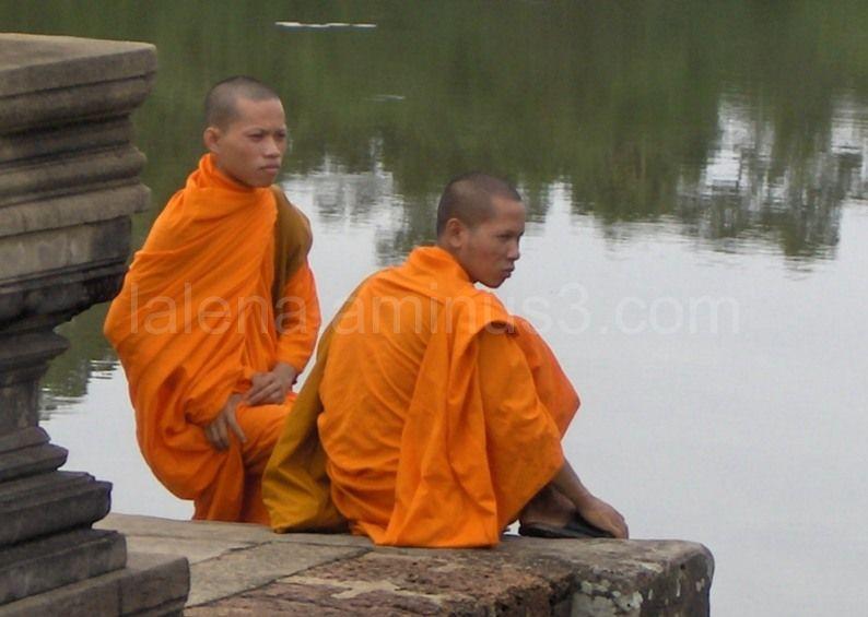monjos a Angkor Wat (Cambodja)