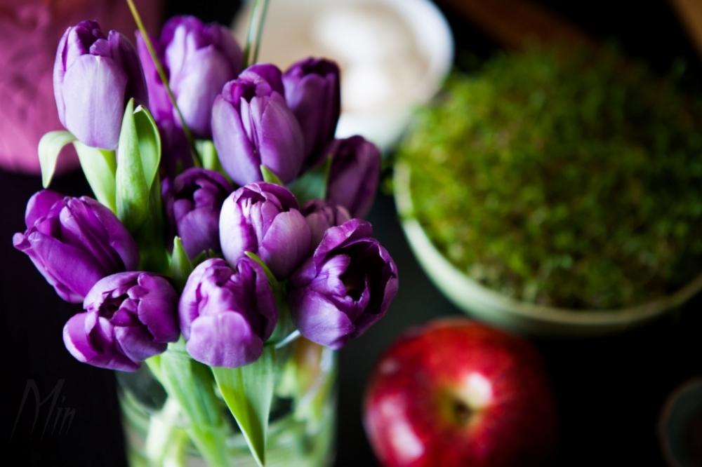 Happy Norouz  نوروز میارک