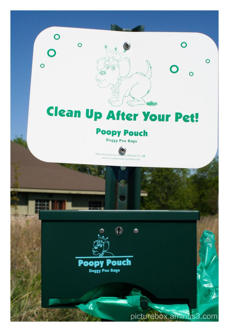 Field Trip 5 - Pet Cleanup