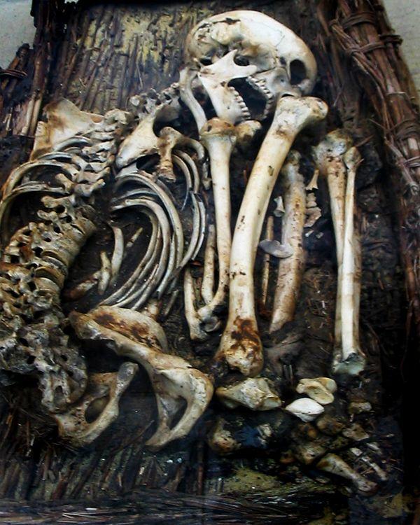 human bones in burial