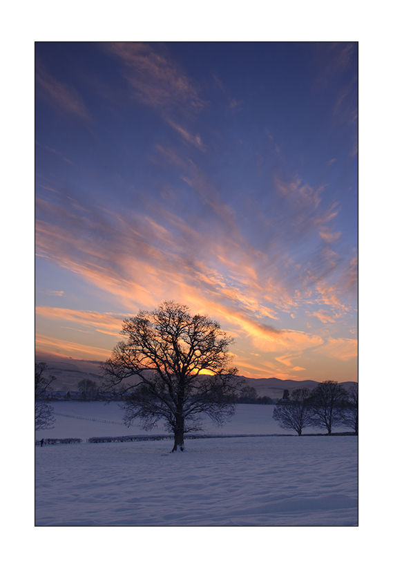 sunset over snowy fields