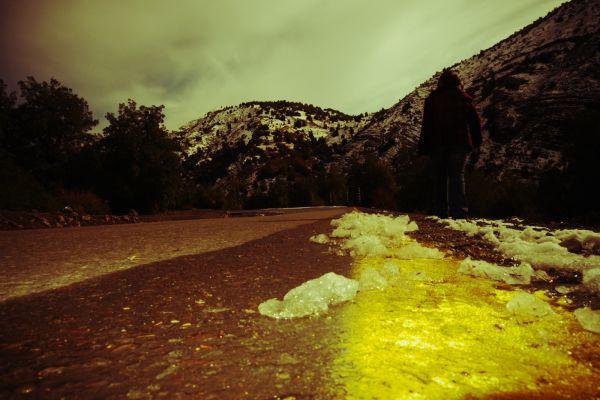 camino amarillo