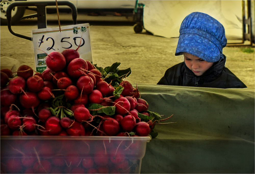 Radish Little Seller