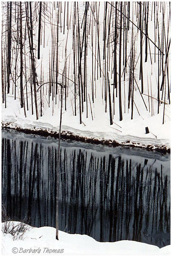 Dark Water #9